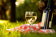 Eco-conscious foodies should pay special attention to the way their wine is being produced