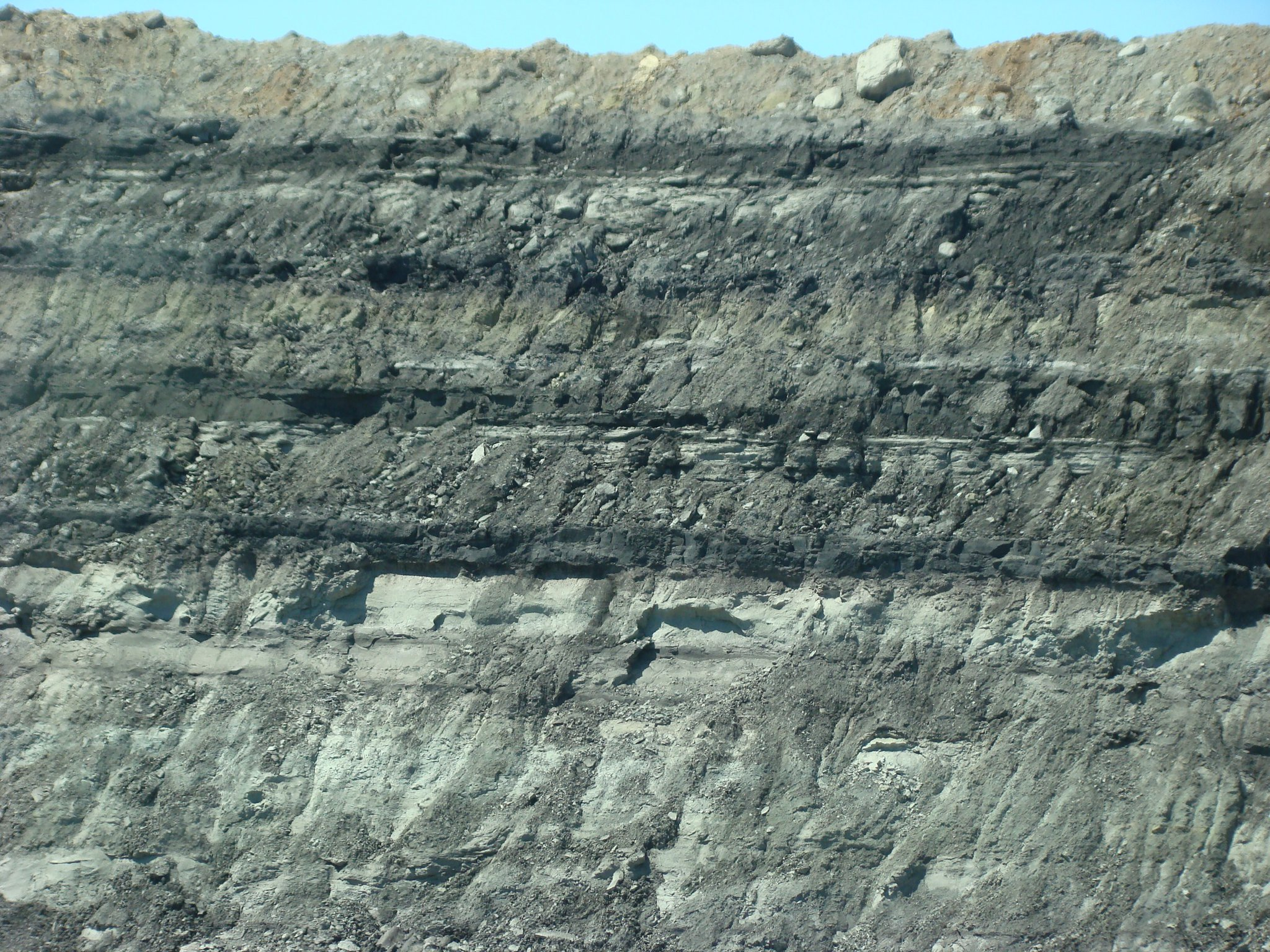 Coal Seams at Red Hills Mine