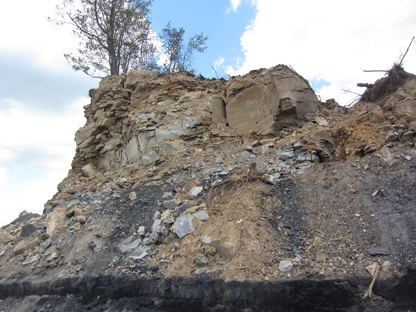 Sandstone Overburden_and coal